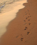 Footprint in sand Royalty Free Stock Photo