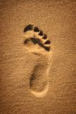 Footprint in the sand Stock Photos