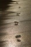 Footprint on the sand summer Stock Photos