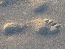 Footprint in the beach sand Royalty Free Stock Images
