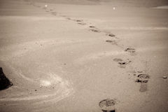 Footprint in sandy beach Stock Photos