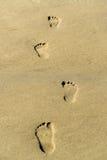 Footprint on a sandy beach Stock Photo