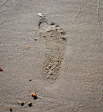 Footprint on the sea sand. At the shore close-up Stock Photos