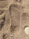 Footprint on sea-sand royalty free stock images