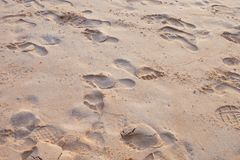 Shoe print at beach Royalty Free Stock Images