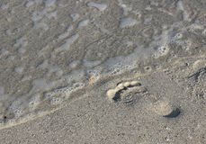 Footprint. A single footprint in the sand leading to the ocean royalty free stock photography