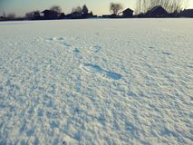 Footprint. In the snow im winter a lake Stock Images