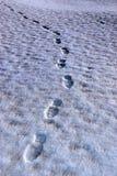 Footprint tracks on a links golf course