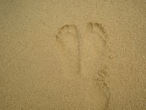 Footprint on the tropical beach. In vacation time royalty free stock images