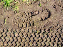 Footprint and tyre print Stock Image