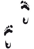 Footprint (vector) Royalty Free Stock Image