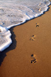 Footprint in wet sand Royalty Free Stock Image