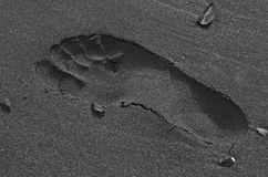 Footprint in the wet sand Stock Photo