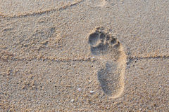 Footprint in wet sand beach Stock Image