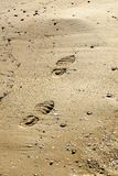Footprint on wet sand Royalty Free Stock Images