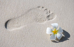 Footprint on white sand Royalty Free Stock Photo