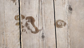 Footprint on wooden floor Royalty Free Stock Images