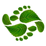 Footprint ying jang  sign Royalty Free Stock Photos