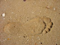 Footprints. Left by the beach Stock Image