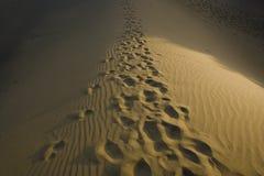 Free Footprints Stock Photos - 10666843