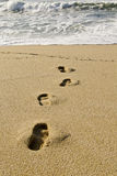 Footprints. In the sand. Near the water Royalty Free Stock Image
