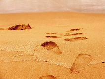 Footprints. (steps), sand beach, close-up, edge of water, summer vacations Royalty Free Stock Photos