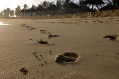 Footprints. In the sand near the Omani city Salalah royalty free stock photo