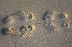 Footprints. On the sandy coral beach stock photography