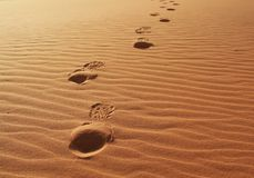 Footprints Royalty Free Stock Photos