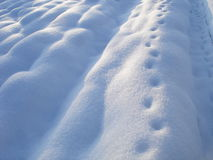 Footprints. In the snow Stock Image