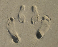 Free Footprints Royalty Free Stock Photography - 459027