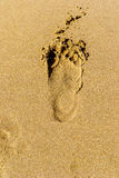 footprints Obraz Stock