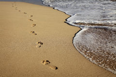 footprints Стоковые Фотографии RF