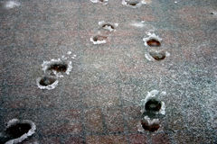 Footprints. Depicting a decision in man´s life Stock Photo
