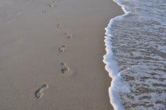 footprints Obraz Royalty Free