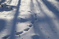 footprints image libre de droits