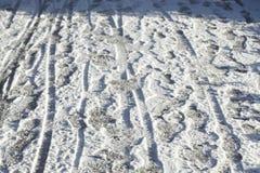 footprints стоковые изображения