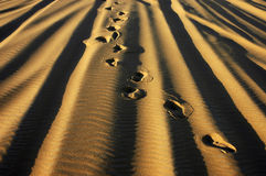 Footprints. Prints in the desert sand, Egypt Royalty Free Stock Photos