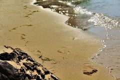 footprints Photo stock