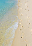 Footprints Along Seashore Royalty Free Stock Photography