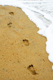 Footprints along water edge Royalty Free Stock Photo