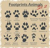 Footprints Animals - vector set. Stock Photography