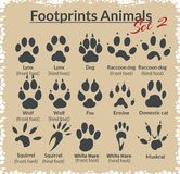 Footprints Animals - vector set. Royalty Free Stock Image