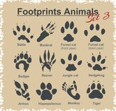 Footprints Animals - vector set Stock Images
