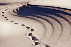 Footprints Around the Snow Bank. A series of footprints around a snow bank Stock Photo