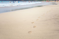 Footprints of bare feet in the sand on the beach Stock Images