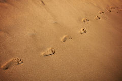 Footprints on the beach. Footprints men on the beach in Hawaii Stock Photo