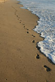 Footprints on the beach royalty free stock images
