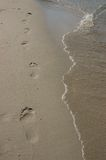 Footprints on a beach Royalty Free Stock Photo