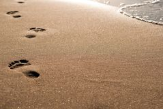 Footprints on the beach. Foot-pure in the sand lead along the water stock photo